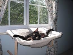 cat hammock diy decor pinterest cat hammock and cat