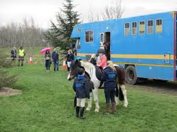 fettercairn youth horse project at the tallaght st patrick u0027s day