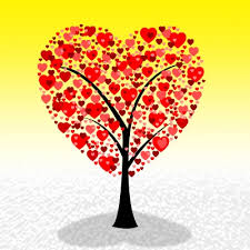 imagenes de amor con bellas palabras bellas palabras de san valentin para mi esposa textos de amor