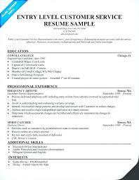 resume summary exles customer service resume summary exles for customer service resume summary es