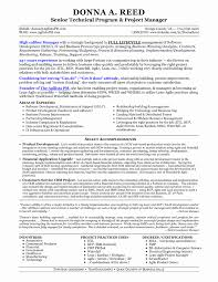 Project Manager Resume Tell The Company Or Organization Sle Resume For Senior Manager Inspirational It Technical Project