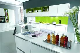 Cheap Kitchen Cabinets Ny Kitchen Cabinets In Queens Ny U2013 Truequedigital Info