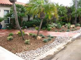 Backyard Desert Landscaping Ideas Ten Fav Desert Landscape Ideas For Backyards