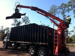 tree service company orlando tree removal company tree removal