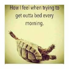 Get Out Of Bed Meme - trying to get out of bed postings pinterest pregnancy