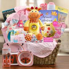 family gift baskets newborn baby girl fabulous family basket stork baby