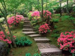 Japanese Rock Garden Plants Lawn Garden Mountainside Japanese Garden Design With