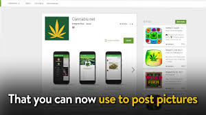 Free Home Design App For Iphone by Cannabis App For The Iphone And Android Now Live Youtube