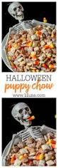 dollar tree halloween candy halloween puppy chow