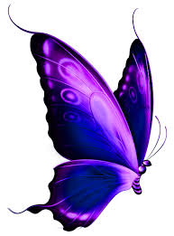 butterfly blue purple and green w black outline