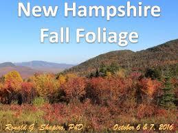hampshire fall foliage 2016
