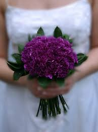 purple carnations bridal bouquet purple carnations shields and shields