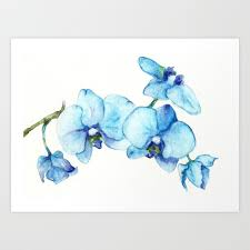 blue orchids blue orchids watercolor print by evgeniya society6
