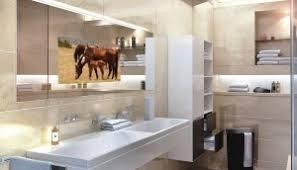 Bathroom Mirror Tv by Bathroom Tv Http Lomets Com
