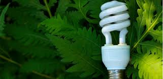 how to save energy with cfl bulbs for your home today u0027s homeowner