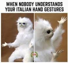 Italian Memes - paganini doesn t repeat irreverent italian memes pinterest