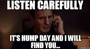 Happy Hump Day Memes - happy hump day a kat and a mouse