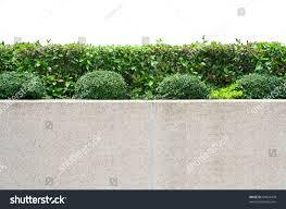 Exterior Decoration Exterior Decoration Garden On Gravel Concrete Stock Photo 84024478