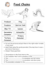 16 best images of food chain worksheet cut and paste food chain