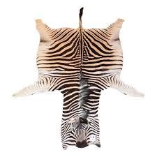 zebra rugs u2013 trophy room collection