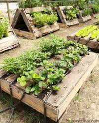 Garden Ideas With Pallets 25 Garden Pallet Projects Vegetable Garden Time Saving And Gardens