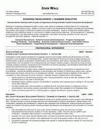 Non Profit Resume Samples Cover Letter Seamstress Resume Seamstress Resume Examples Free