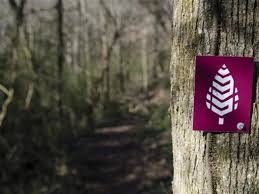 Orlando Urban Trail Map by 9 Of The Best Hikes In Knoxville