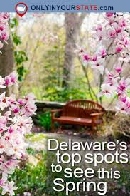 Small Towns Usa by 235 Best Delaware Images On Pinterest Delaware Beautiful Places