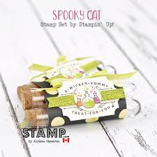 stampin up halloween stamps nice people stamp halloween treats w spooky cat u0026 treat tubes