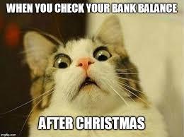 Cat Christmas Memes - scared cat meme imgflip