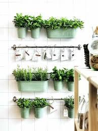 indoor herb garden kits to grow herbs indoors hgtv easy indoor garden nightcore club
