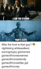 Storm Meme - 25 best memes about i am the storm i am the storm memes