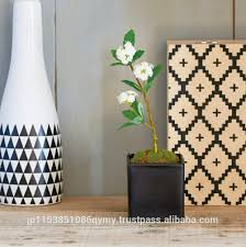 pot bonsai design yixing bonsai pot yixing bonsai pot suppliers and manufacturers