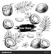 188 best background images on pinterest hand drawn vector