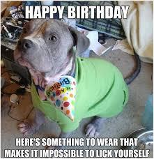 Funny Animal Birthday Memes - dog happy birthday meme pics good morning images pinterest