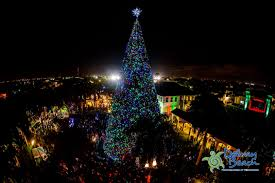 100 ft tree festivities downtown delray