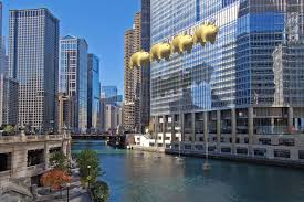 Trump Towers Address Flying Pigs To Taunt Trump Tower In Chicago Thanks To Roger Waters