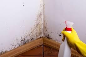 moisissure mur chambre comment enlever la moisissure des murs avec des astuces maison