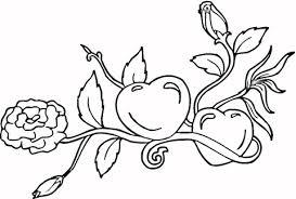 imagenes para colorear rosas dibujo de corazón y rosas para colorear dibujos para colorear