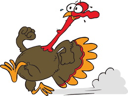 the great thanksgiving the great turkey chase fun run