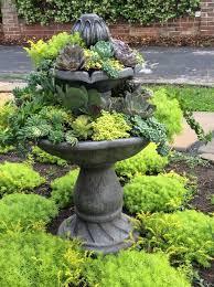 best 25 succulent containers ideas on pinterest succulent