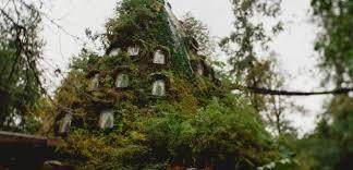 famous tree houses fancy famous fantasy friday huilo huilo magic mountain tree house