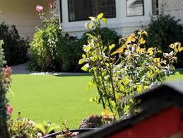 Bridgeport Carpet Artificial Grass Carpet Poulsbo Washington Design Ideas Front