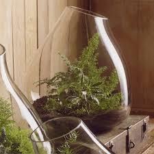 vasi in vetro economici vasi per piante vasi e fioriere