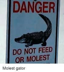 Gator Meme - pics onsizzle com danger do not feed or molest mol