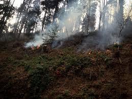 Colorado Wildfire Risk Assessment Portal by Sccf Undp U0027s Climate Change Adaptation Portal