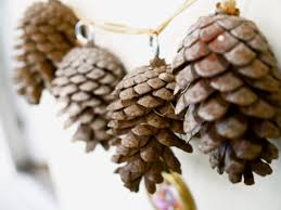 white pine cone how to make a pine cone garland the magic onions