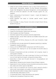 Results Driven Resume Example by Nirav Resume
