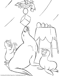 circus animal coloring trained seals desenhos
