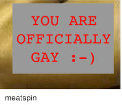 Meatspin Meme - you are officially gay meatspin dank meme on ballmemes com